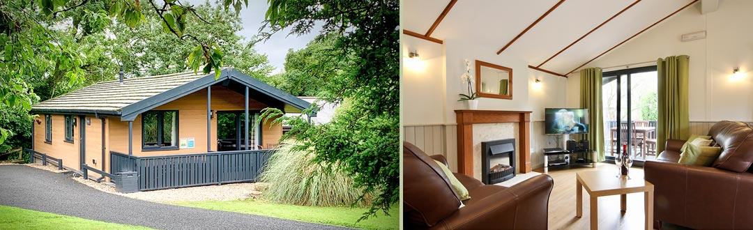 Birch Cottage Style Luxury Holiday Lodge